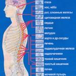 Фото с сайта vestnik7.com