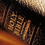 Bible new